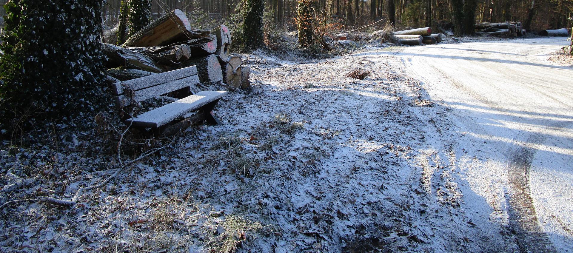 Winterimpression aus Hankensbüttel