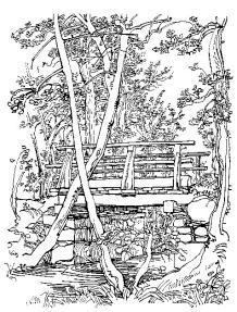 Strichzeichnung Lüsche